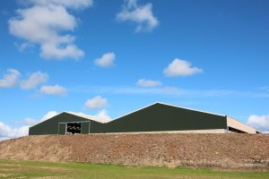 New Twin-span cow shed